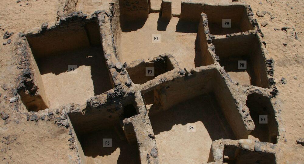 Una foto del sito nell'oasi di Bahariya