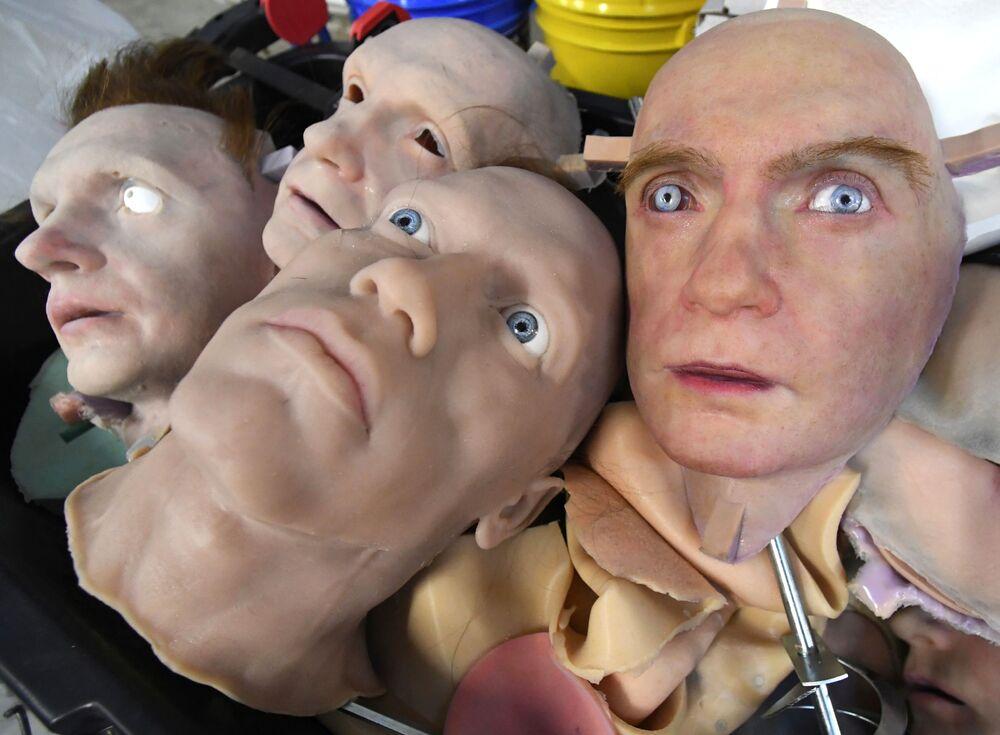 Campioni sperimentali nel laboratorio per lo sviluppo della pelle artificiale a Vladivostok