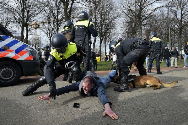 Gli agenti di polizia arrestano un partecipante a una manifestazione antigovernativa all'Aia, Paesi Bassi - Sputnik Italia