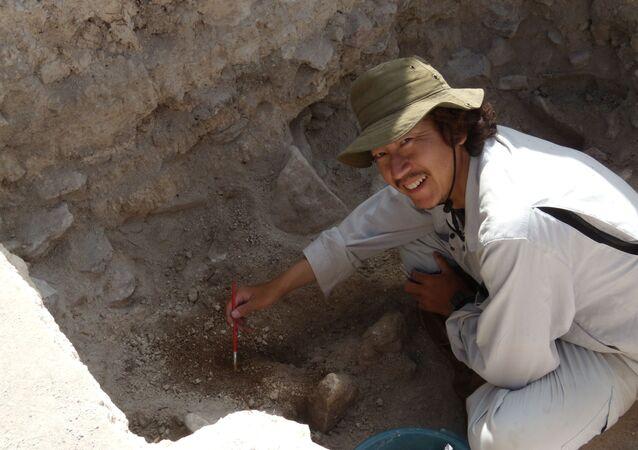 Civiltà Maya, scavi nel sito di El Palmar