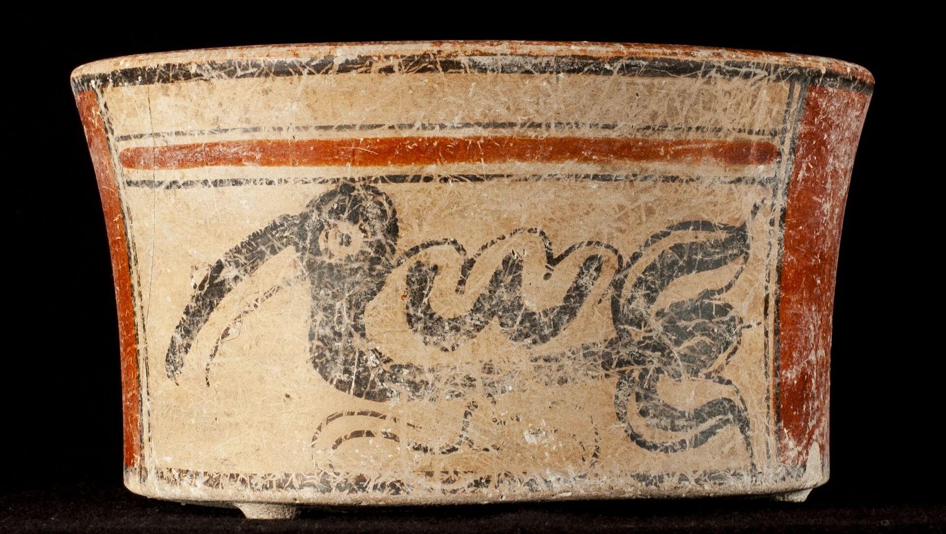 Scoperto il segreto di un influente ambasciatore Maya vissuto 1.300 anni fa - Foto - Sputnik Italia, 1920, 19.03.2021