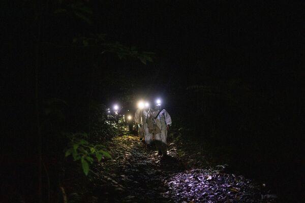 Ecologi con pipistrelli catturati ai piedi del Monte Makiling a Los Baños, nella provincia di Laguna, Filippine - Sputnik Italia