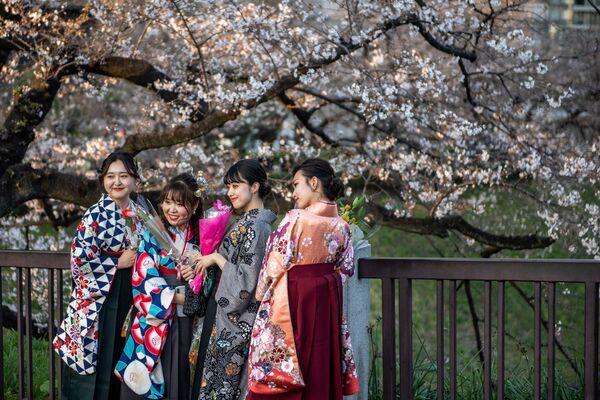 Le ragazze che indossano la hakama, un abito tradizionale per la cerimonia di consegna dei diplomi ai laureati, posano per le foto sotto i fiori di ciliegio al Parco Kitanomaru di Tokyo il 23 marzo 2021, mentre i famosi ciliegi del paese hanno iniziato la loro fioritura annuale quasi due settimane prima del previsto - Sputnik Italia