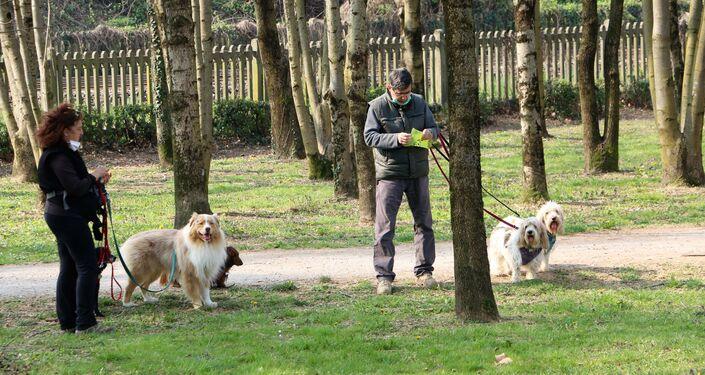 Le persone camminano con i cani in un parco