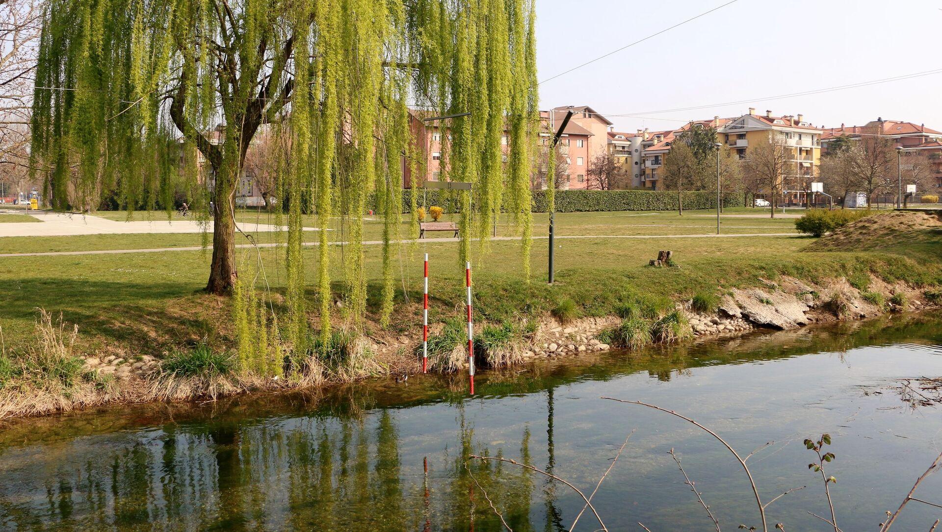 Un albero e un laghetto in un parco - Sputnik Italia, 1920, 14.04.2021