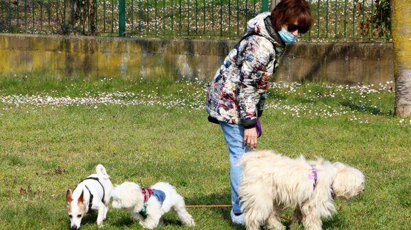 La donna con tre cani in un parco di Milano - Sputnik Italia