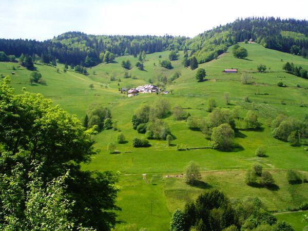 La Foresta Nera è una regione montuosa del sud-ovest della Germania, al confine con la Francia. Rinomata per le fitte foreste sempreverdi e i paesini pittoreschi, viene spesso associata alle fiabe dei fratelli Grimm - Sputnik Italia