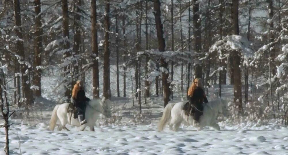 Dalla Taiga all'Europa sui cavalli Yakut