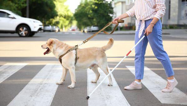 Cane guida con una ragazza - Sputnik Italia
