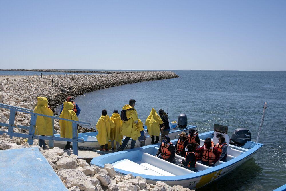 Il tour in barca per vedere le balene in Messico
