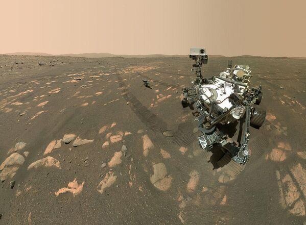 Il rover Perseverance della NASA scatta un selfie con l'elicottero Ingenuity - Sputnik Italia
