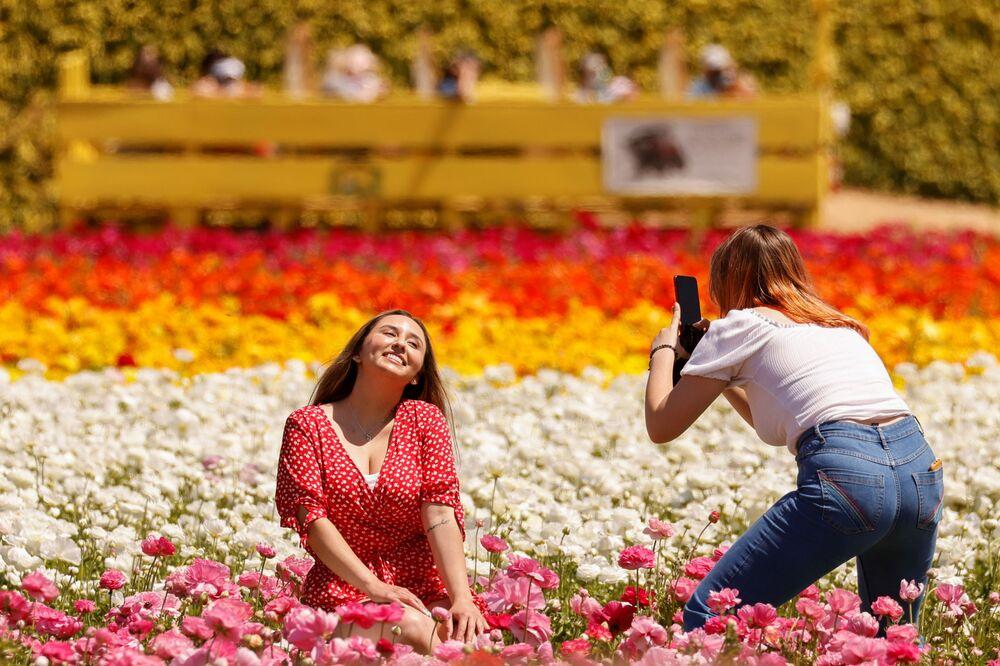 I visitatori scattano foto tra i 50 acri di fiori di ranuncolo presso The Flower Fields a Carlsbad, California, Stati Uniti.