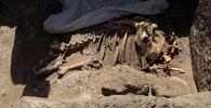 I resti scheletrici di animali da Città d'oro perduta'', che è stata scoperta dagli archeologi, nella Cisgiordania di Luxor, nell'Alto Egitto, il 10 aprile 2021