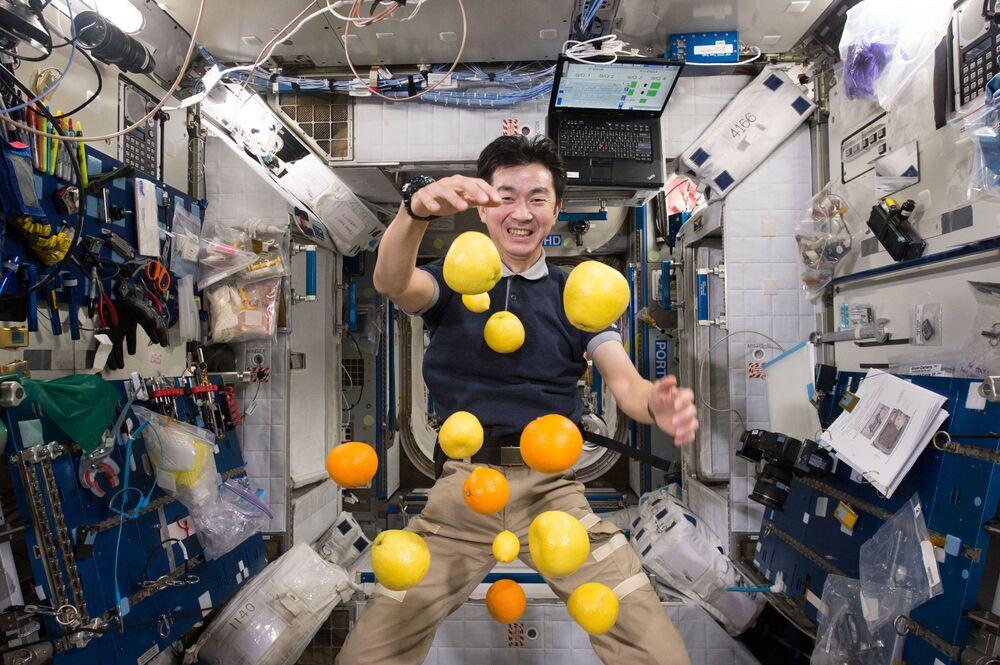 L'astronauta giapponese Kimiya Yui raccoglie frutti volanti a bordo della ISS