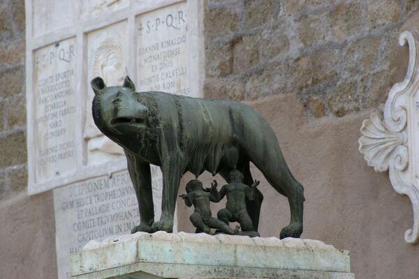 La Lupa capitolina, una scultura di bronzo, di incerta datazione, custodita ai Musei Capitolini, a dimensioni approssimativamente naturali - Sputnik Italia
