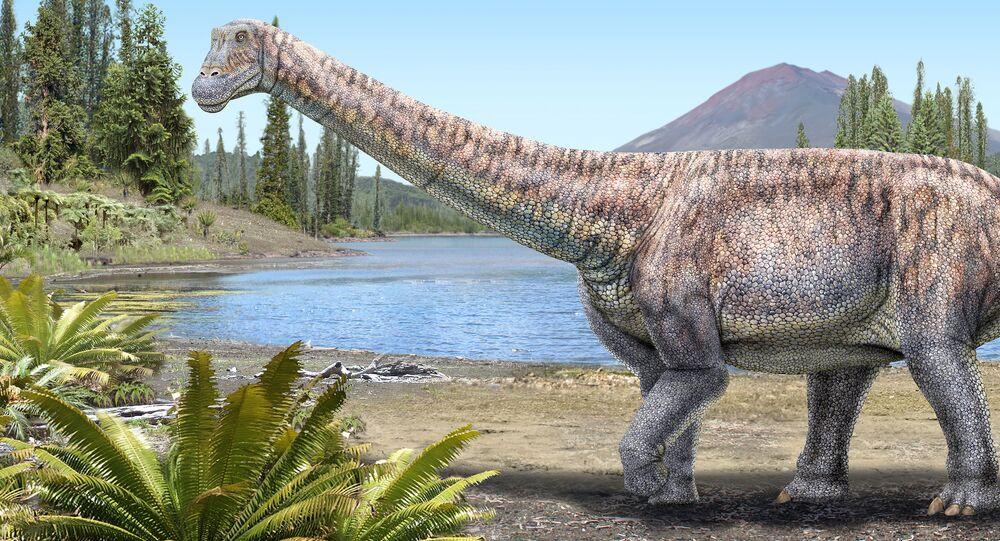 Dinosauro Arackar licanantay