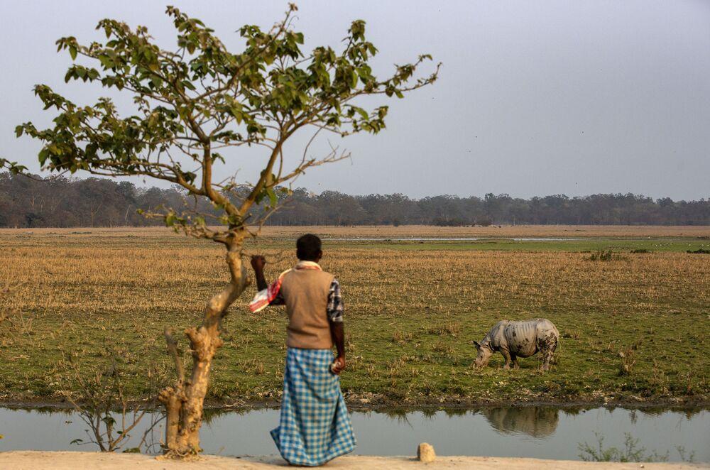 Un uomo nel santuario della fauna selvatica di Pobitora alla periferia di Gauhati, India, il 12 febbraio 2021