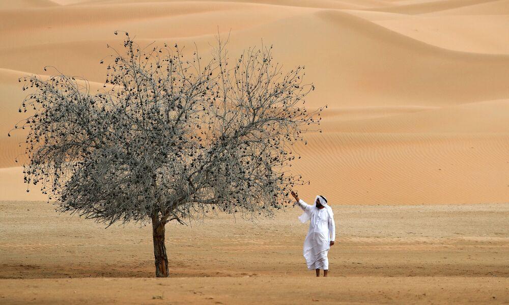 Un uomo accanto a un albero nel Santuario dell'Orice d'Arabia a Umm Al-Zamool, negli Emirati Arabi Uniti, a circa 290 chilometri a sud di Abu Dhabi, vicino al confine con l'Oman e l'Arabia Saudita