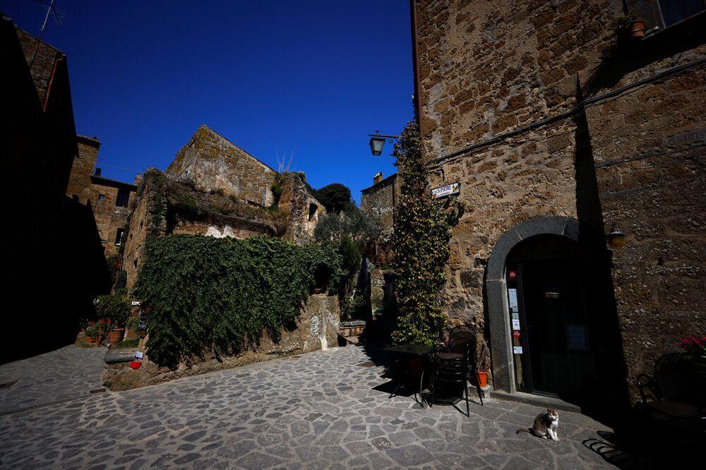 Un gatto si siede davanti a un locale chiuso a Civita di Bagnoregio