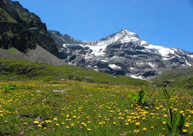 Alpeggi Gran Nomenon - Aymavilles (Aosta) - Valle d'Aosta - Italia.  Il ghiacciaio del Trayo e la Grivola.  Parco Nazionale del Gran Paradiso (PNGP) - Alpi Graie.