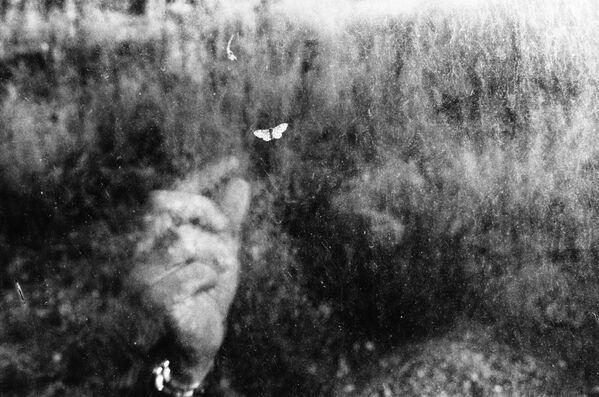 Una foto della serie Il cammino della bellezza del fotografo italiano Umberto Verdoliva,  che è stata valutata nel concorso fotografico All About Photo Awards 2021 - Sputnik Italia