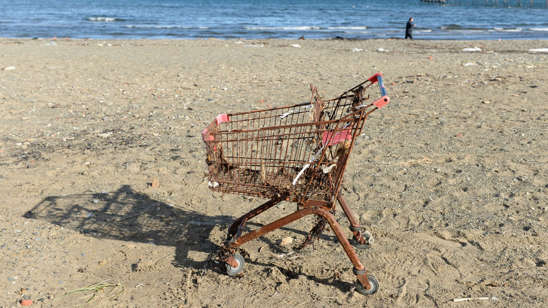 Un carrello arrugginito su una spiaggia - Sputnik Italia, 1920, 12.05.2021