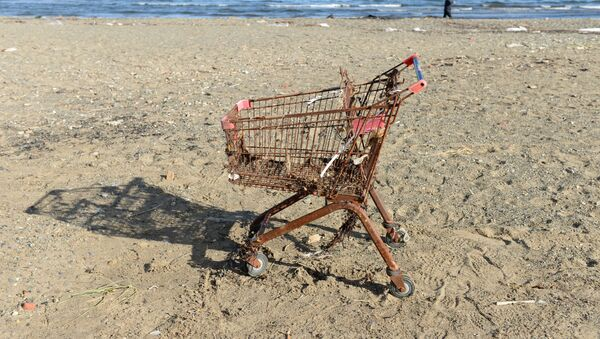 Un carrello arrugginito su una spiaggia - Sputnik Italia