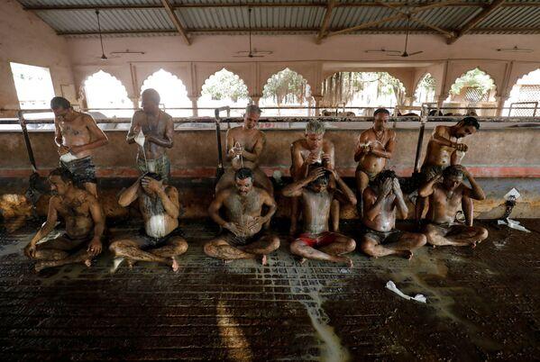 Gli indiani lavano via lo sterco di vacca con il latte, che è stato applicato al corpo per aumentare l'immunità e proteggersi dal coronavirus - Sputnik Italia