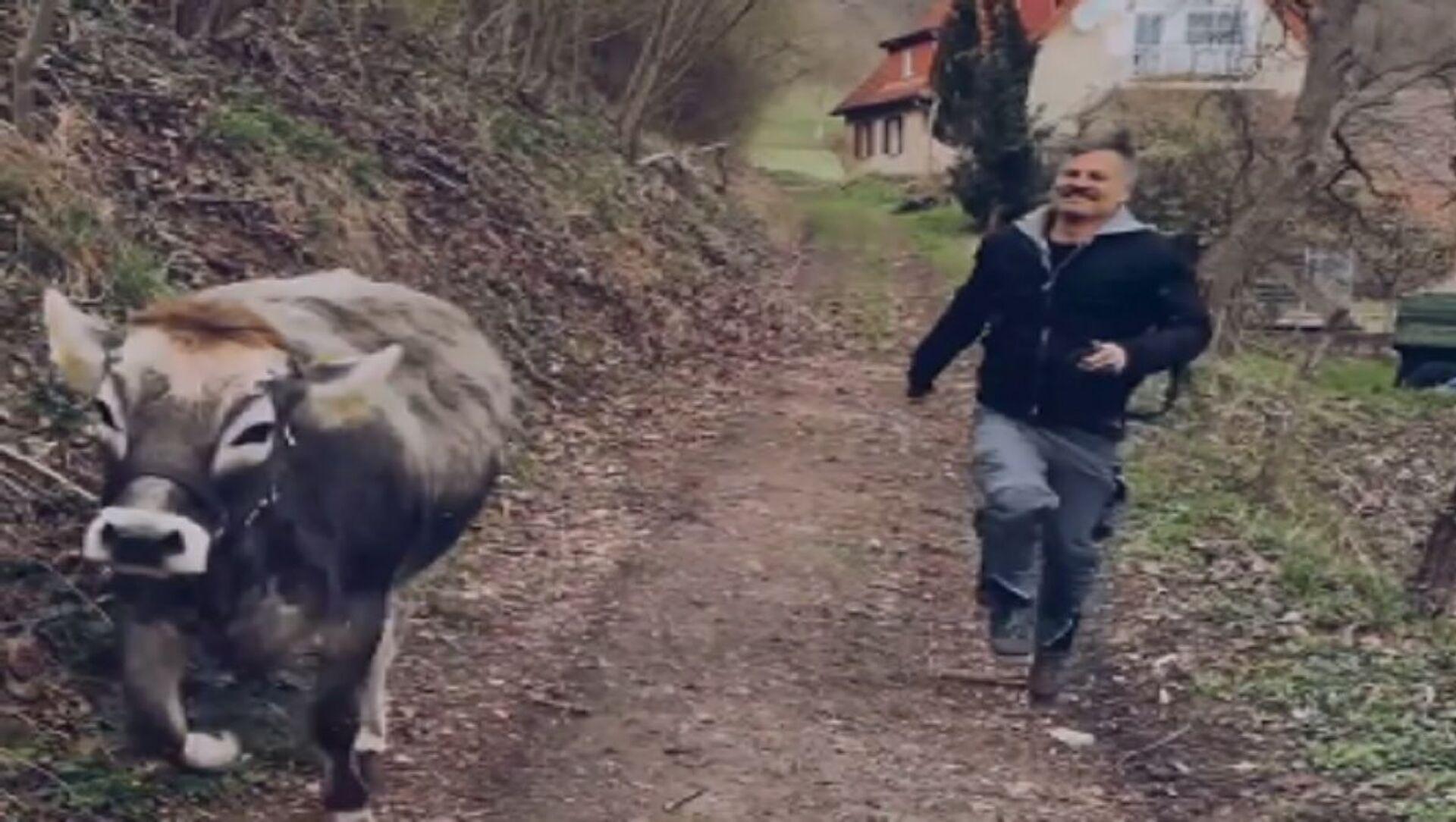 Il contadino e la mucca  - Sputnik Italia, 1920, 14.05.2021