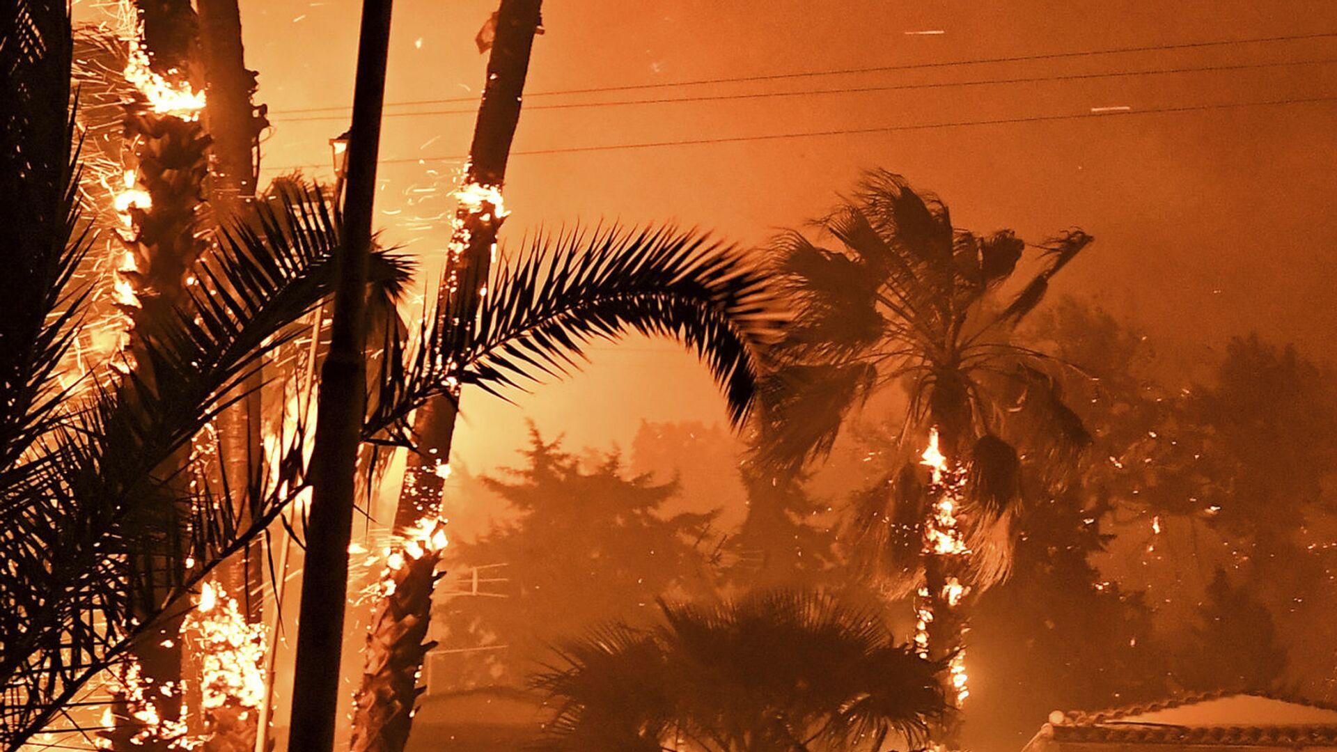 Un incendio forestale nella Grecia - Sputnik Italia, 1920, 08.08.2021