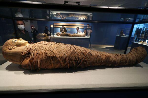 Tra le esposizioni più importanti del museo ci sono due mummie ben conservate. - Sputnik Italia