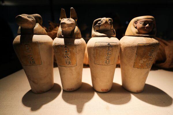 I reperti comprendono un gruppo di vasi canopi dell'antico Egitto, piccoli pezzi del periodo islamico e copto.  - Sputnik Italia