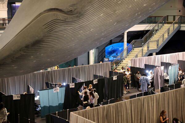 Le persone ricevono il vaccino contro il COVID-19 nel Museo americano di storia naturale a New York. - Sputnik Italia