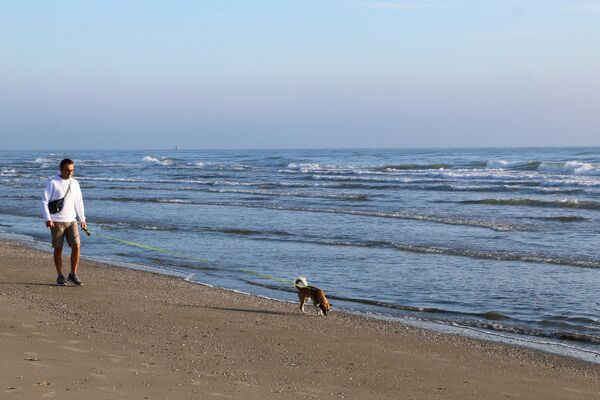 Un uomo con il suo cane passeggia lungo la costa del mare - Sputnik Italia