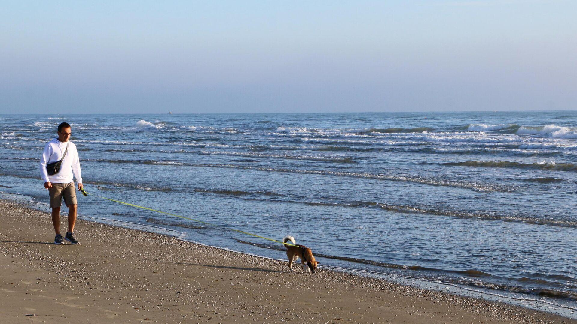 Un uomo con il suo cane passeggia lungo la costa del mare - Sputnik Italia, 1920, 08.07.2021