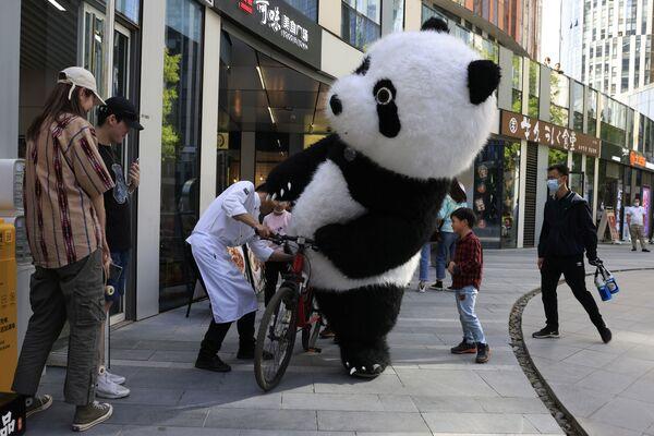 Un uomo vestito da panda prova ad andare in bicicletta con l'aiuto di uno chef a Pechino, 5 maggio 2021. - Sputnik Italia