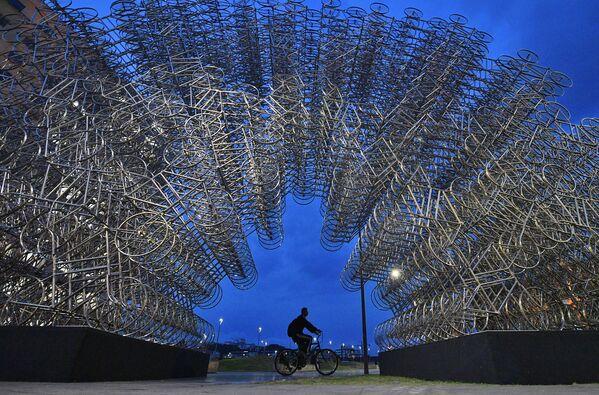 """Un uomo pedala davanti all'installazione artistica intitolata """"Forever Cycles"""" dell'artista cinese Ai Weiwei a Rio de Janeiro, Brasile, 19 agosto 2019.  - Sputnik Italia"""