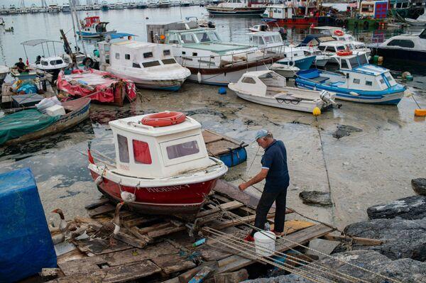 Gli scienziati hanno anche suggerito al ministero di lavorare sul perfezionamento degli impianti di trattamento delle acque reflue in cinque quartieri di Istanbul, dove il mare è il più inquinato. - Sputnik Italia