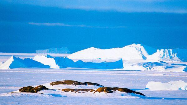 Пейзаж Антарктиды - Sputnik Italia