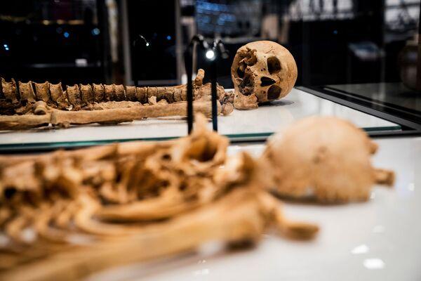 Uno dei vichinghi morì in Inghilterra a vent'anni in XI secolo, per ferite alla testa. Fu sepolto in una fossa comune a Oxford. - Sputnik Italia