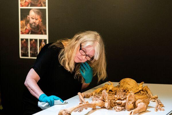 Un dipendente del Museo Nazionale della Danimarca disimballa lo scheletro di un uomo trovato in una fossa comune a Oxford, Gran Bretagna. - Sputnik Italia
