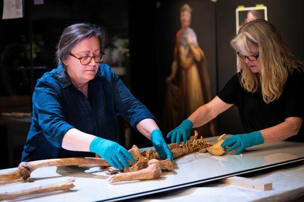 Il DNA degli scheletri dell'era vichinga ha permesso agli archeologi di determinare per caso che i due fossero imparentati. - Sputnik Italia
