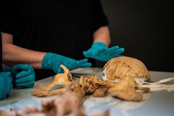 L'altro è morto in Danimarca a 50 anni circa, il suo scheletro recava tracce di colpi che suggeriscono che abbia preso parte a battaglie. - Sputnik Italia