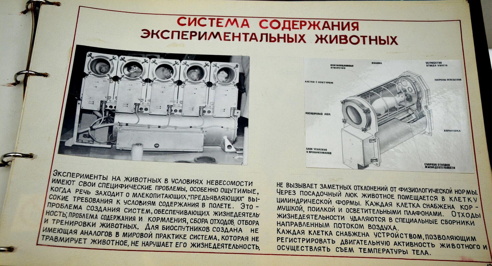 Origini del progetto BION - Museo dello Spazio di Kaluga - Sputnik Italia, 1920, 19.06.2021
