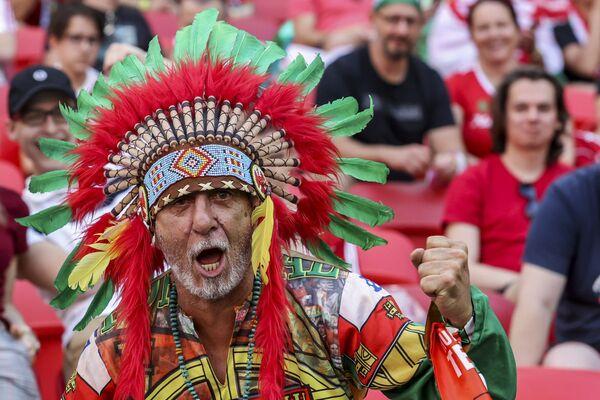 Un tifoso portoghese durante la partita tra Ungheria e Portogallo al campionato di calcio Euro 2020 allo stadio Ferenc Puskas di Budapest, Ungheria, martedì 15 giugno 2021. - Sputnik Italia