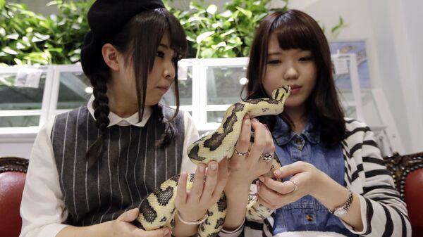 Девушки со змеей в кафе Tokyo's Snake Center в Токио  - Sputnik Italia