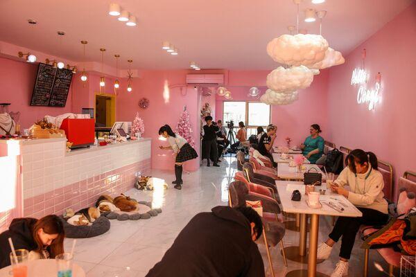 La vista generale dell'Hello Corgi Cafe di Shanghai. - Sputnik Italia