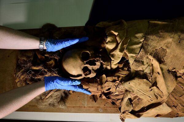 La mummia proveniente da Luxor, l'antica Tebe, è stata sottoposta a una TAC nel Policlinico di Milano nell'ambito di un progetto di ricerca per scoprirne i segreti. - Sputnik Italia