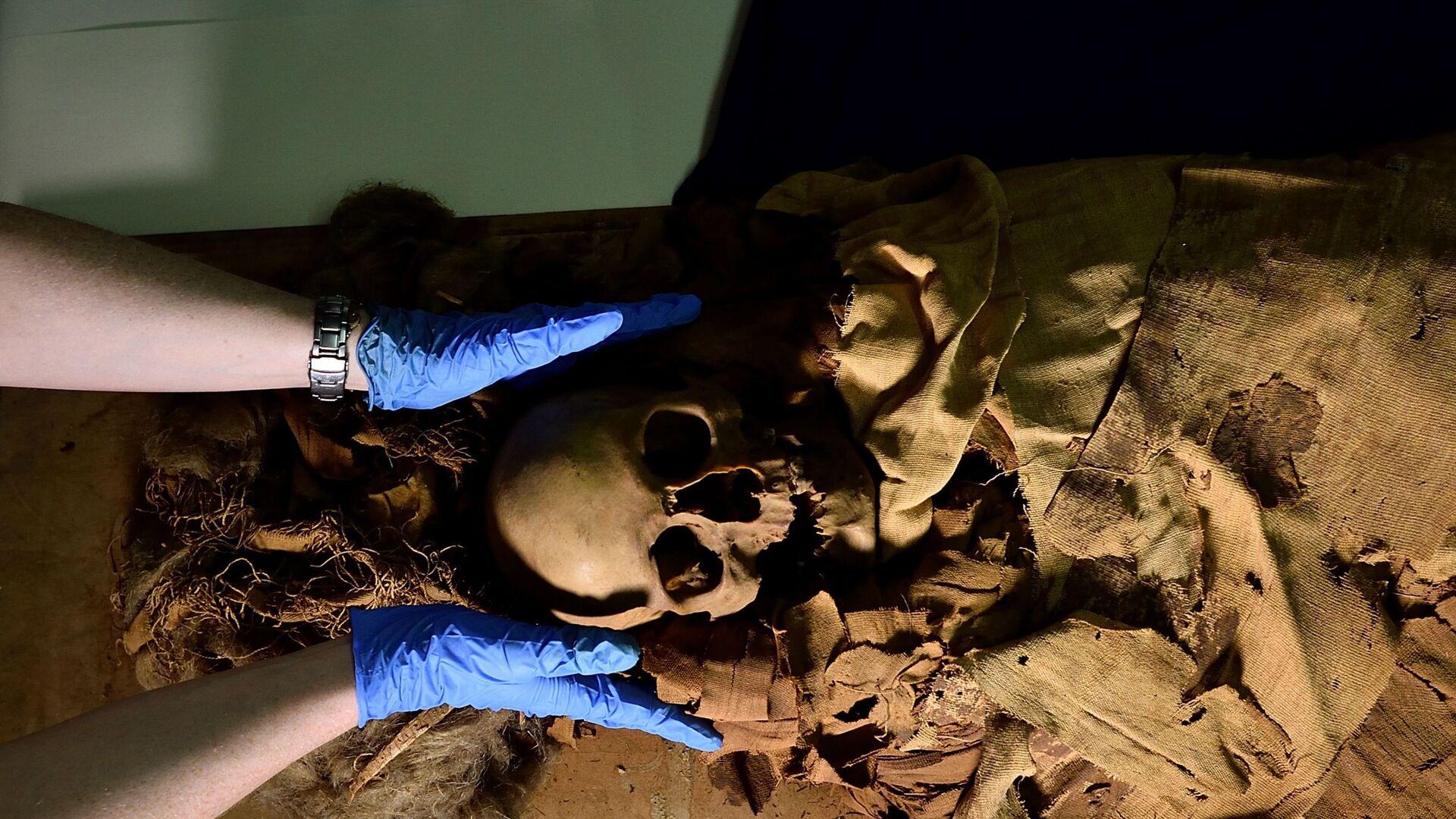 Policlinico di Milano usa la TAC per svelare i segreti di una mummia egiziana - Sputnik Italia, 1920, 23.06.2021