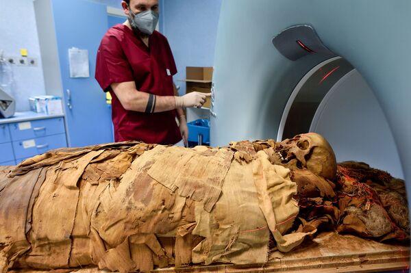 Alle analisi seguirà poi il restauro, che permetterà di esporre la mummia nella nuova sezione egizia del Museo Civico Archeologico di Bergamo, città a cui fu donata nel 1885 da Giovanni Venanzi, allora console d'Italia ad Alessandria d'Egitto. - Sputnik Italia